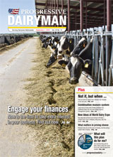 Progressive Dairyman Issue 13 2010