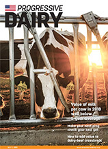 Progressive Dairy Issue 11 2019