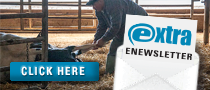 Latest Progressive Dairyman enewsletter