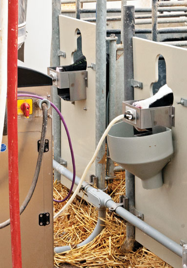 Roundtable which automatic calf feeder is best for you