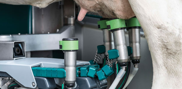 Fully Automated Rotary Parlor A First For North America