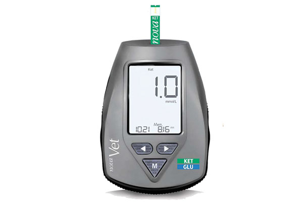 blood ketone analyzer