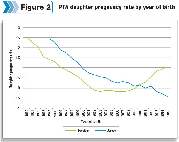 daughter pregnancy rate