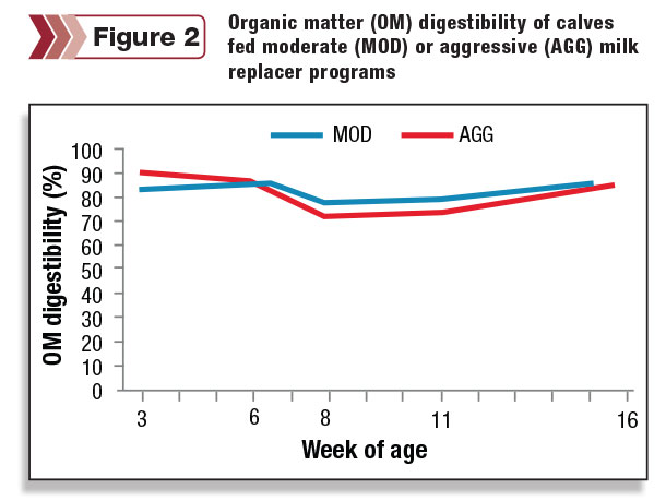 Organic matter digestibility of calves fed moderate or aggressive milk replacer