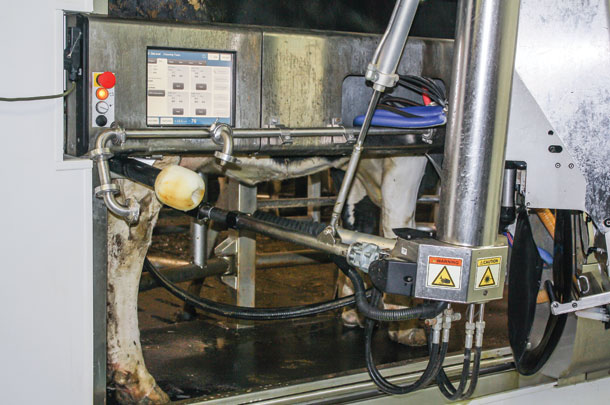 Why robots may not bring the labor efficiencies a dairy farmer is seeking