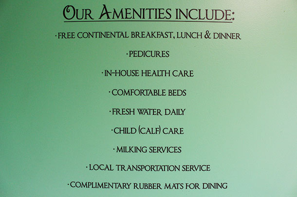 Our amenities include: sign