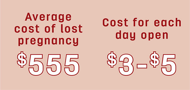 Average cost of lost pregnancy