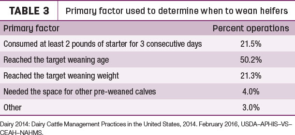 Primary factor used to determine when to wean heifers