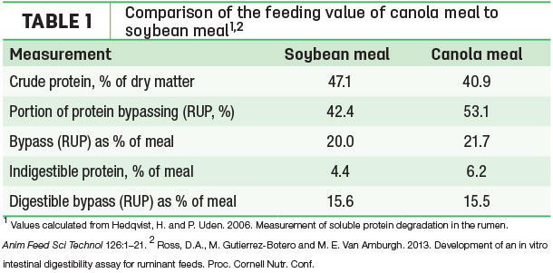 comparison of the feeding value of canola meal to soybean meal