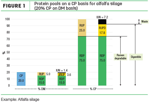 protein pools on a CP basis for alfalfa silage