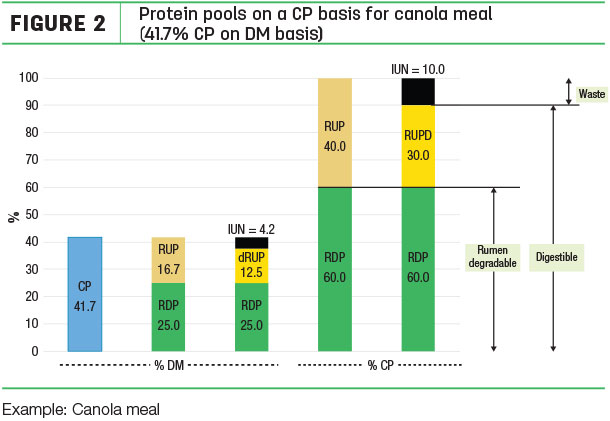 Protein pools on a CP basis for canola meal