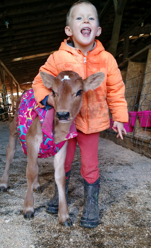 Child and a calf in a vest