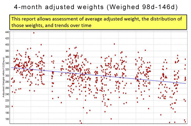 Figure 3 4-month adjusted weight