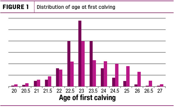 Distribution of age at first calving
