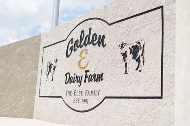 The Golden E Dairy promotional video