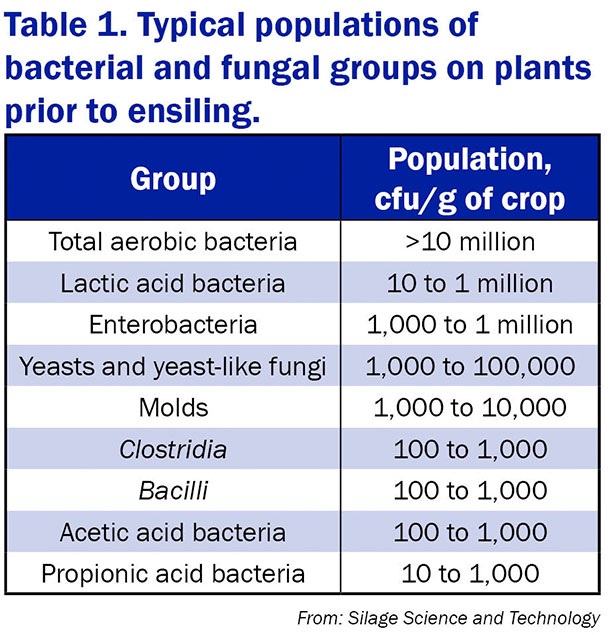 bacterial fungal populations table