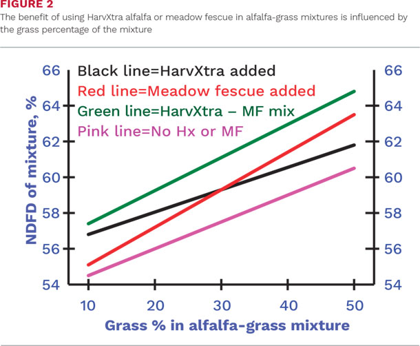 The benefit of using HarvXtra alfalfa or meadow fescue in alfalfa-grass mixtures