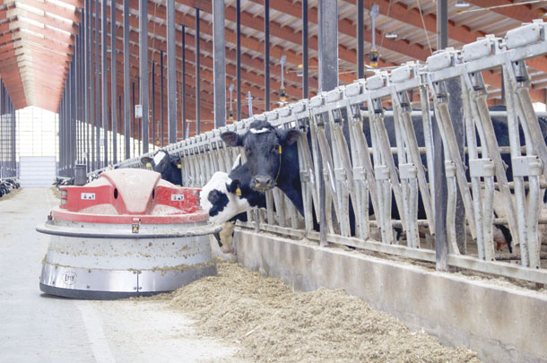 Automatic feed pusher is programmed with its own playlist that prompts cows to come to the bunk