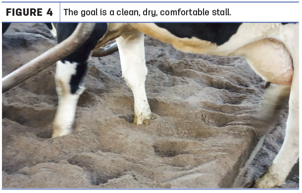 The goal is a clean, dry, comfortable stall