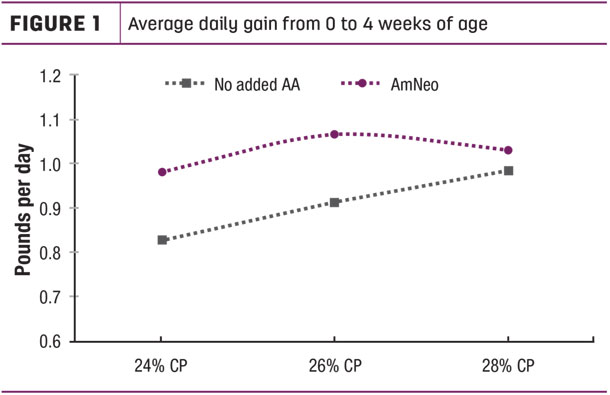 Average daily gain from 0 to 4 weeks of age