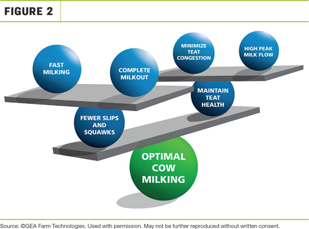 Optimal cow milking