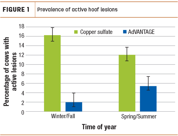 Prevalence of active hoof lesions