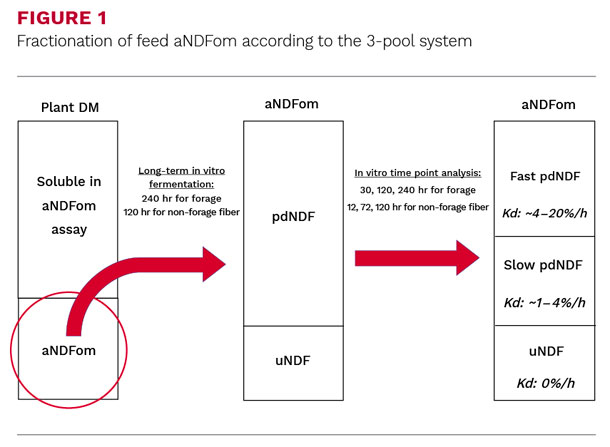 Fractionatoin of feed aNDFom according to the 3-pool system