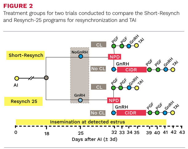 Treatment groups for two trials conducted to compare the Short-Resynch and Resynch-25 programs