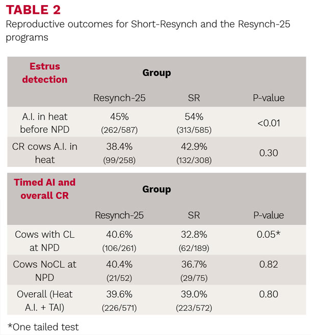 Reproductive outcomes for Shrot-Resynch and the Resynch-25 programs