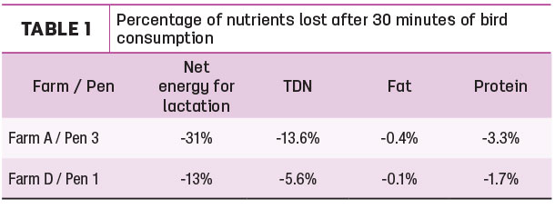 Percentage of nutrients lost after 30 minutes and bird consumption