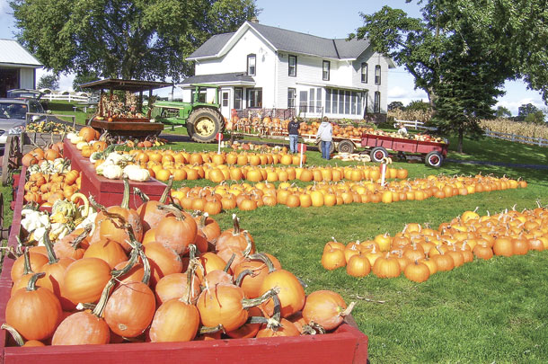 Every fall, Cozy Nook Farm sells thousands of fall decorations