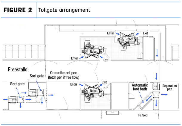 Sortgate milking robot arrangement