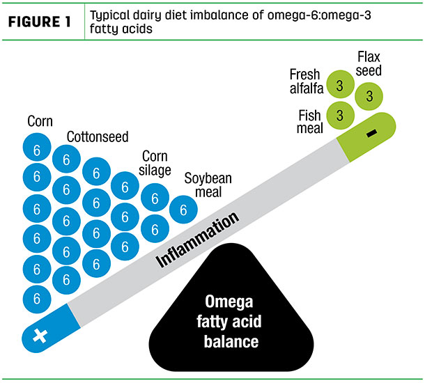 Typical dairy diet imbalance of omega-6:omega-3 fatty acids
