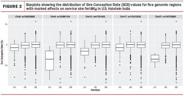Boxplots showing the distribution of Sire Conception rate values for five aenomic regions with marked effects on service sire fertility in U. S. Holstein bulls