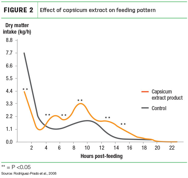 Effect of capsicum extract on feeding pattern