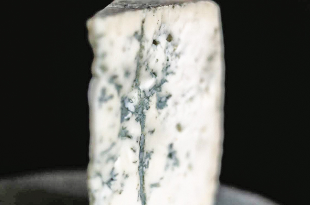 Chapel's Country Creamery - Bay Blue