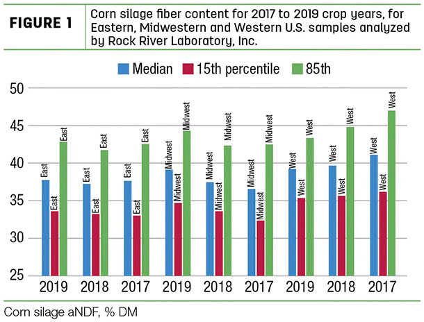Corn silage fiber content for 2017 to 2019 crop years