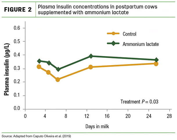 Plasma insulin concentrations in postpartum cows
