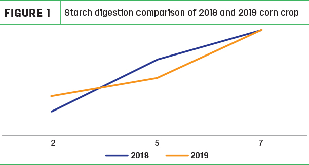 Starch digestion comparison of 2018 and 2019 corn crop