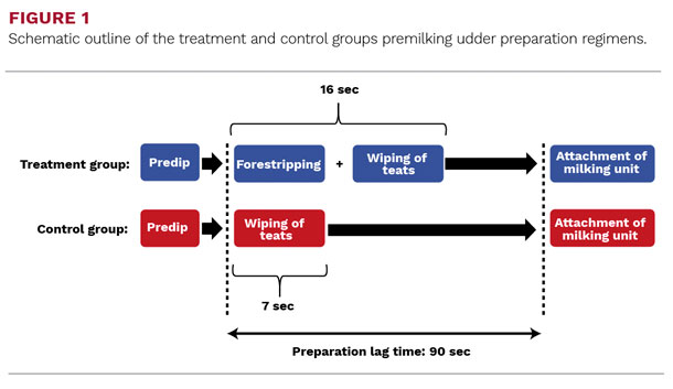 Schematic outline of the treatment and control groups premilking udder preparation regimens