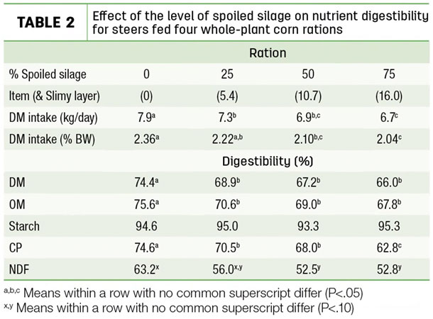 Effect of the level of spoiled silage on nutrient digestibility for steers fed four whole-plant corn rations