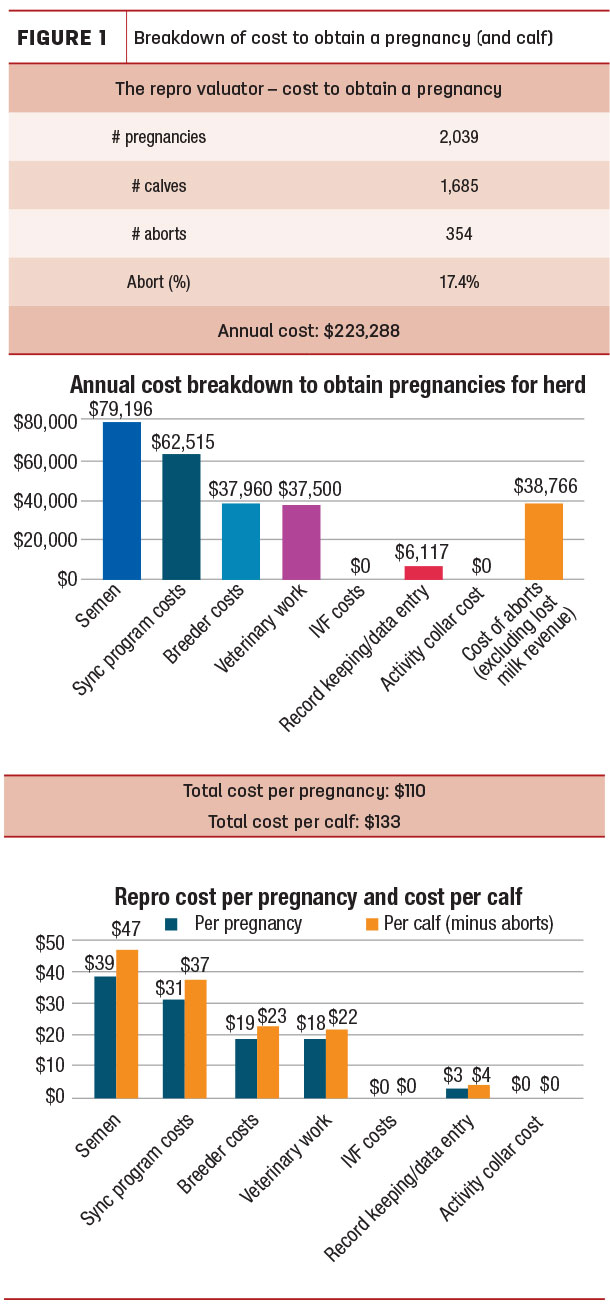 Breakdown of cost to obtain a pregnancy (and calf)